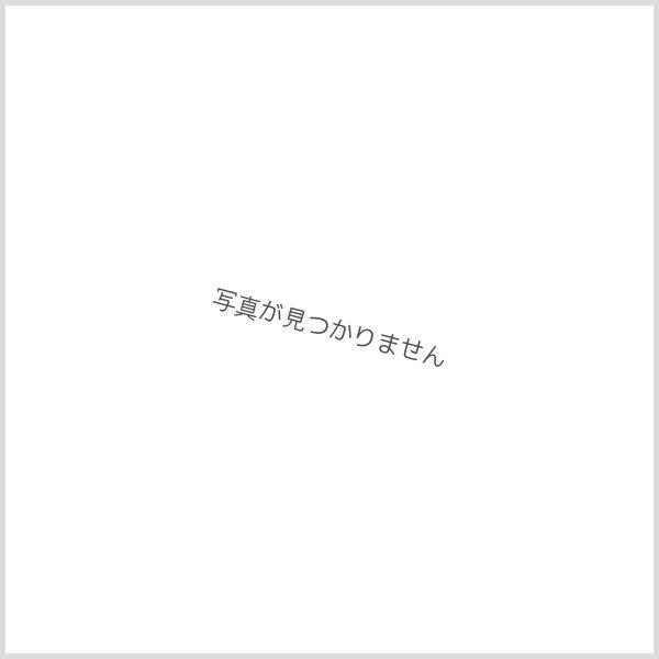 画像1: 木曽檜(キソヒノキ)-013 (1)