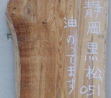 画像2: 黒松(クロマツ)-051 (2)