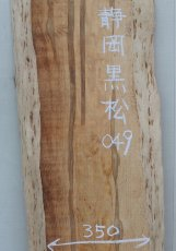 画像2: 黒松(クロマツ)-049 (2)