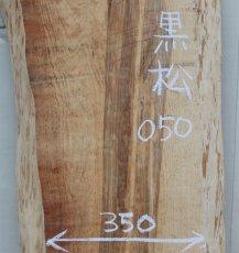 画像2: 黒松(クロマツ)-050 (2)