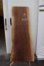 画像2: 杉(スギ)-127 (2)