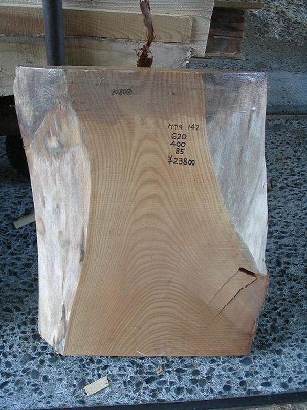 画像1: 欅(ケヤキ)-142 (1)