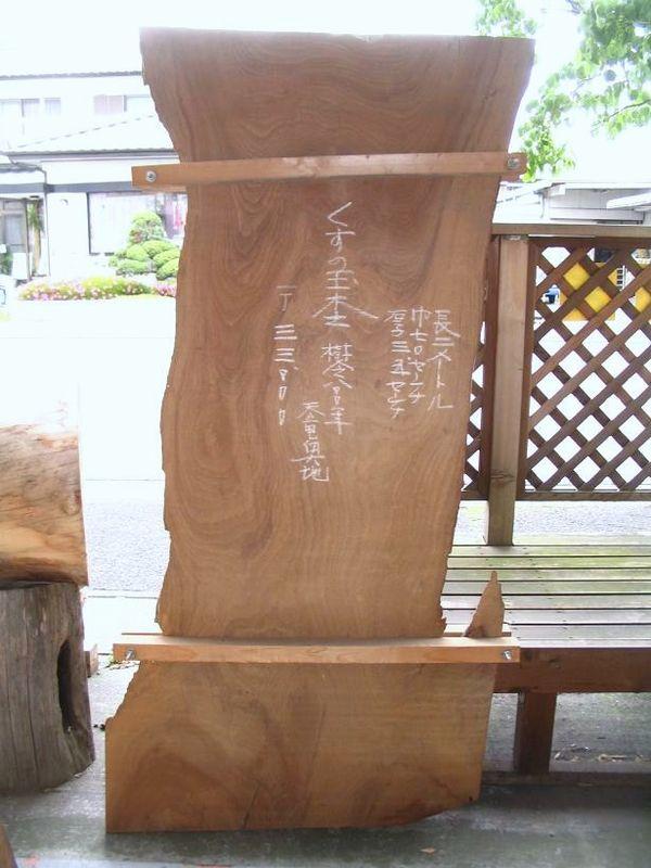 画像1: 楠(クス)-004 (1)