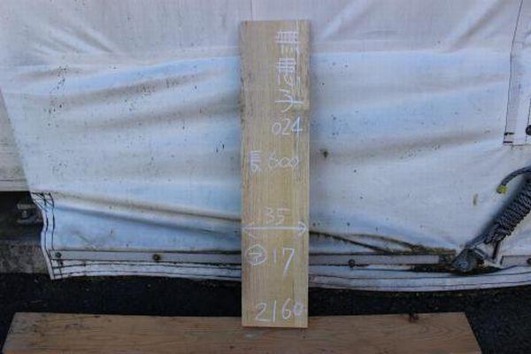 画像1: 無患子(ムクロジ)-024 (1)