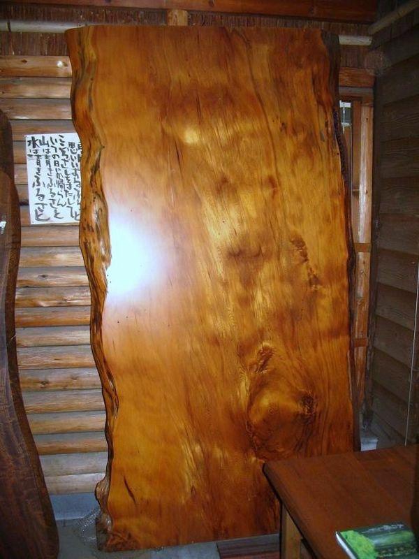 画像1: 屋久杉(ヤクスギ)-004 (1)