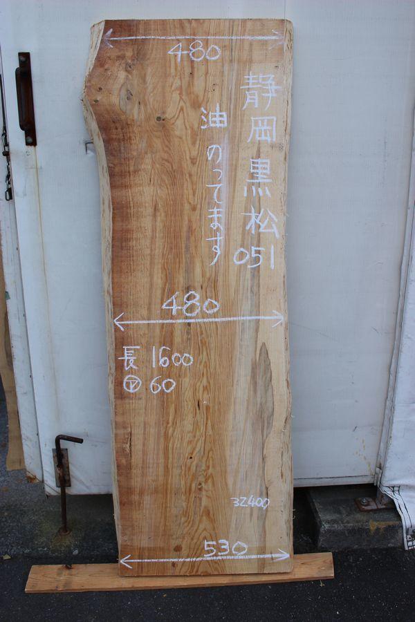 画像1: 黒松(クロマツ)-051 (1)