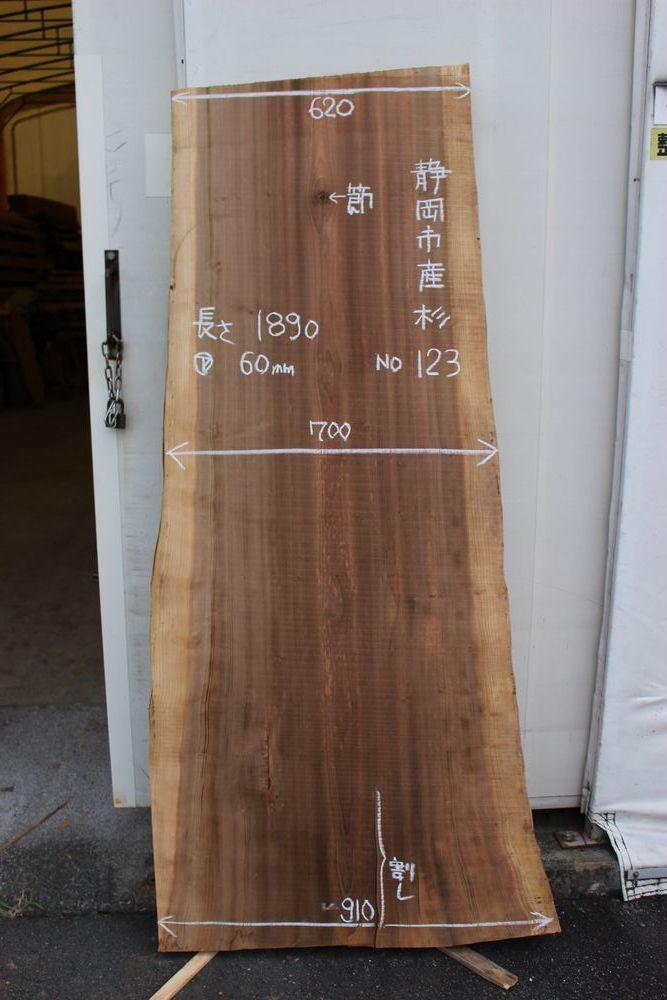 画像1: 杉(スギ)-123 (1)