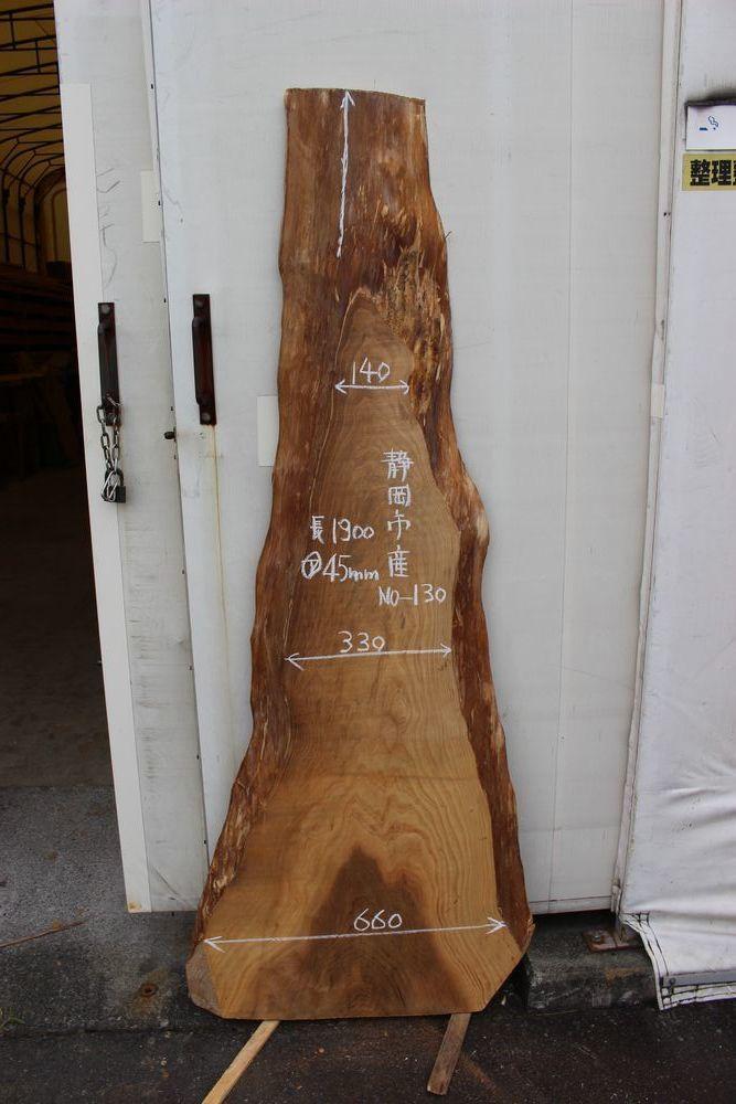 画像1: 杉(スギ)-130 (1)