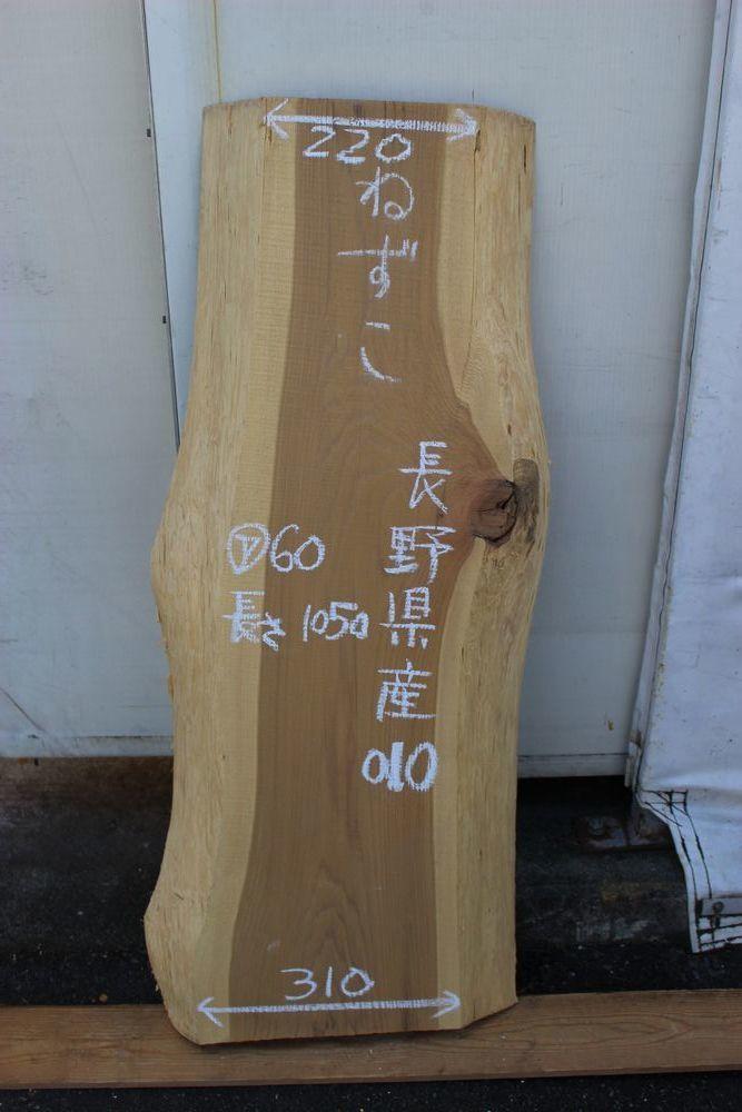 画像1: 鼠子(ネズコ)-010 (1)