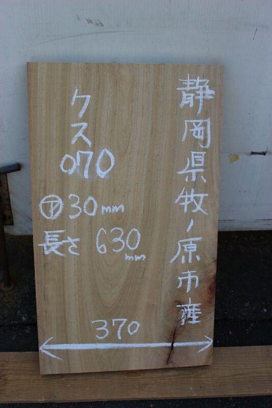 画像1: 楠(クス)-070 (1)