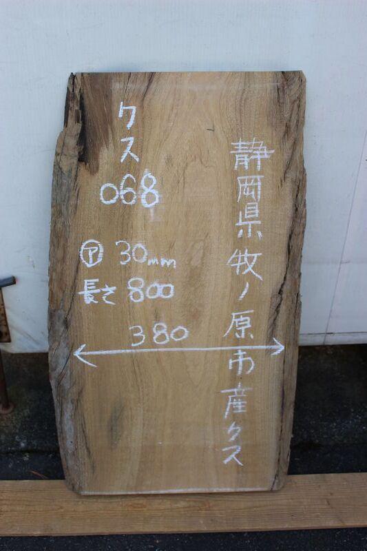 画像1: 楠(クス)-068 (1)